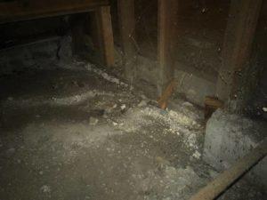 foundation repair alameda
