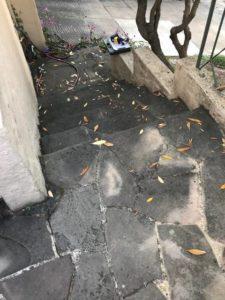 drainage alameda, structural repairs